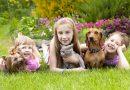Дружба — это чудо: дети и животные
